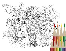 Elephant Coloring Page Adult Set For Pages Of Elephants