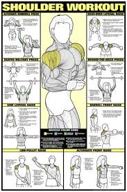 Shoulder Chart Workout Shoulder Workout Apps Tips Tricks Hints Cheats And More