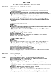 Download Patient Services Assistant Resume Sample as Image file