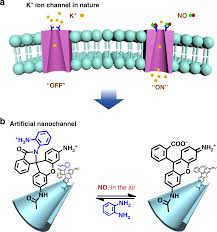 A Highly Selective And Recyclable No Responsive Nanochannel