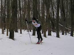 Лыжные шаги виды Техника классических лыжных ходов реферат Цикл одновременного хода состоит из одного скользящего шага и одновременного толчка палками с последующим скольжением на обеих лыжах