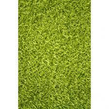 green bath rug bathroomlime green bath rug gorgeous top fantastic noble house sara area light lime