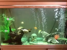 properly aerating your aquarium
