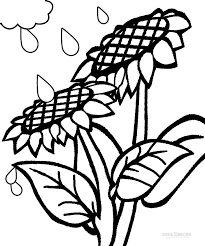 Oncoloring.com, a completely free website for kids with thousands of coloring pages classified by theme and by content. Printable Sunflower Coloring Pages For Kids