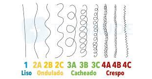 Resultado de imagem para tipos de curvatura de cabelo - tipo 4