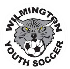 Image result for Wilmington ma  Wildcats soccer logo