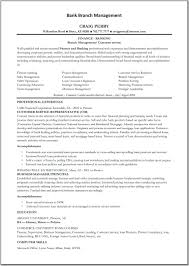 Amazing Personal Banker Resume Summary Gallery Entry Level Resume