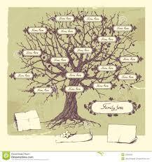 Family Tree Stock Vector Illustration Of Botanical 22080265