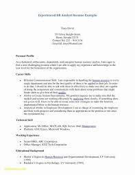 Cover Letter Template Word Free Free Basic Resume Template Free