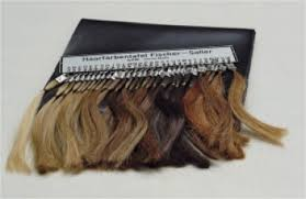 Fischer Saller Scale Chart Gpm Anthropological Instruments Hair Color Chart