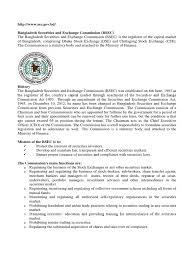 essay about university experience ziplines