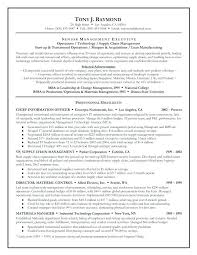 Summaries For Resumes Examples Resume Web