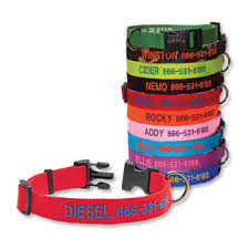 monogrammed dog collars. Personalized Adjustable Dog Collar Monogrammed Collars
