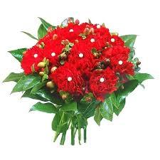 Znalezione obrazy dla zapytania goździki kwiaty