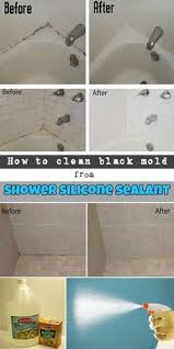 bathroom mold removal products. How To Clean Black Mold From Shower Silicone Sealant Bathroom Removal Products