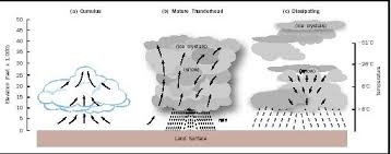 precipitation and clouds  formation of   temperature  types  effectthis schematic illustrates the three general stages of thunderstorm development  an elevation of     feet