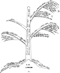 Hand drawn family tree