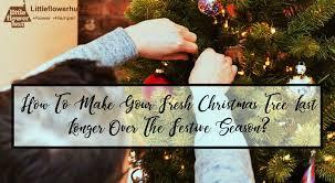 fresh christmas tree last longer