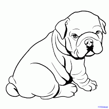 Small Picture Bulldog Coloring Pages For Kids Coloring Page
