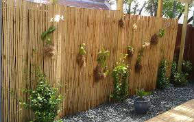 Bamboo turns ugly into beautiful, and more