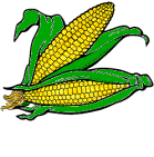 Image result for corn gif