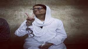 السلطات المصرية تعتقل الناشطة والمحامية ماهينور المصري