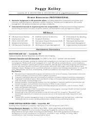 Resume Human Resource Manager Resume Sample
