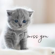 miss you es a loss that s hard