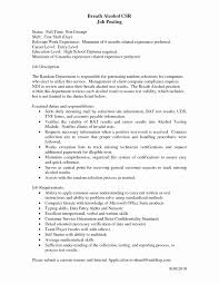 Resume Format Customer Service Fresh Functional Summary Resume