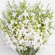 Free <b>Flower</b> Delivery, <b>Free Shipping</b> on Flowers with Fast Delivery