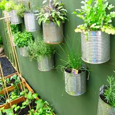 using old food tins to create an urban herb garden