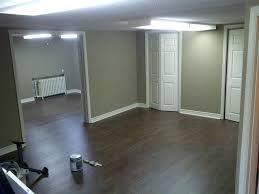 ideas for basement floors pamlinfo