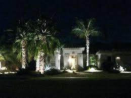 rope light palm trees image led