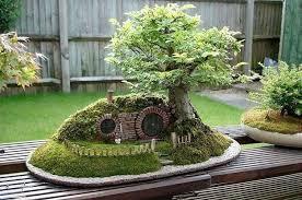 bonsai gardens. bonsai gardens