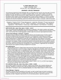 42 Sample Resume For Project Manager Oil And Gas Resume Letter
