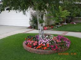 flower beds around trees bed tree