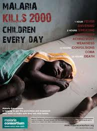 malaria kills children in africa every day  malaria kills 2000 children in africa every day malariaconsortium