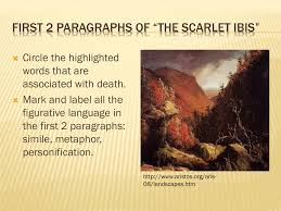 scarlet ibis symbolism essay the scarlet ibis essay symbolism  first paragraphs of the scarlet ibis