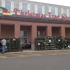wonderful the christmas tree shops locations part 12 every event is special  and - Christmas Tree