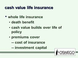 Image result for cash value life insurance