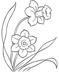 Small Picture Free Coloring Pages for Adults Beautiful big rose coloring page