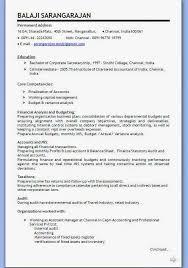 Sample Resume Format For Sales Executive Senior Executive Resume