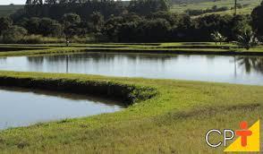 Água e Solo: Técnicas Mecânicas de Conservação