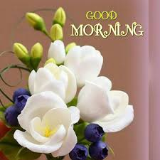 191 Good Morning Images Hd Morning Pictures Wishes Messages