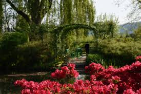 the gardens of giverny photo meredith mullins