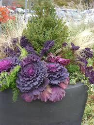 Gone Gardening Creating A Winter Container GardenContainer Garden Ideas For Winter