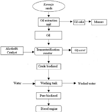 Biodiesel Production Chart The Process Flowchart For Biodiesel Production Download