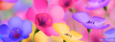facebook covers free spring colorful spring flowers free facebook covers facebook