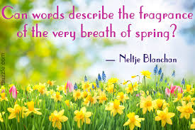 Spring Beauty Quotes