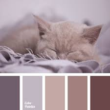 Color Palette #716